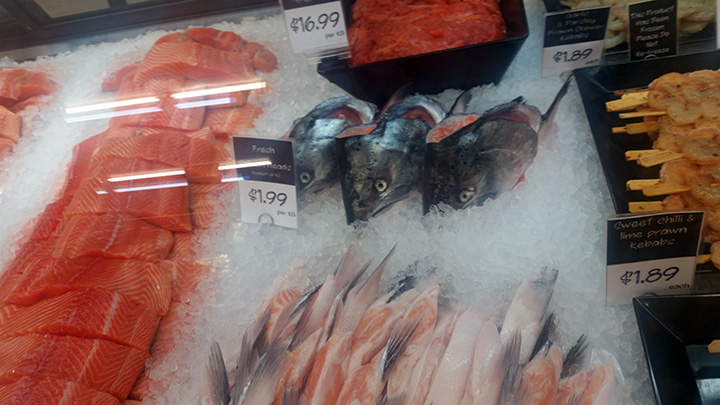 fish-heads