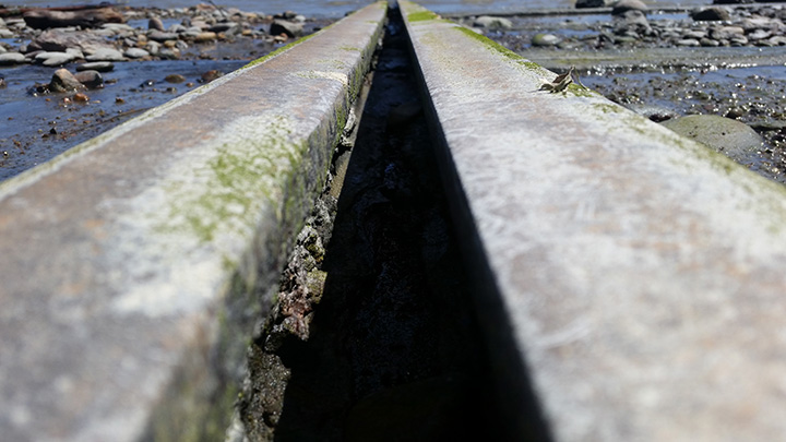 Rails at an abandoned shipyard in Westport