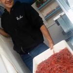 A proud fisherman displaying whole shrimp
